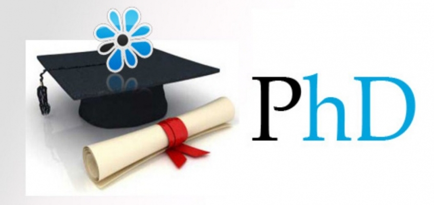 Phd writing services australia, proposal writing service Australia